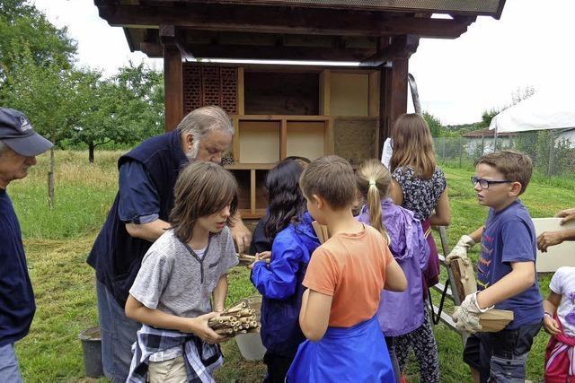Neues Insektenhotel