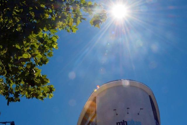 Beim Sonnenschein auf Rekordniveau