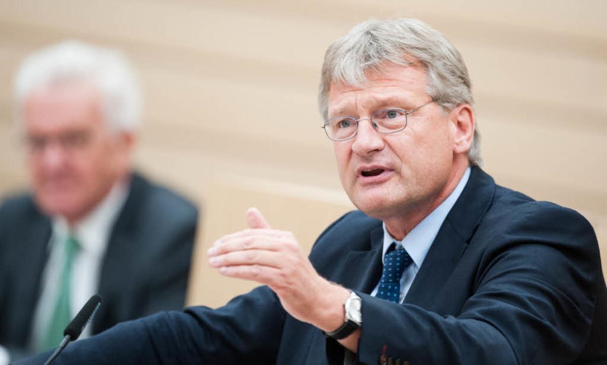 Der frühere AfD-Fraktionschef Jörg Meuthen  im Landtag in Stuttgart    Foto: dpa