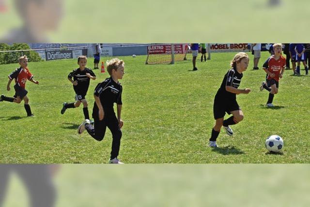 Auch die Kleinsten kämpfen ehrgeizig um jeden Ball