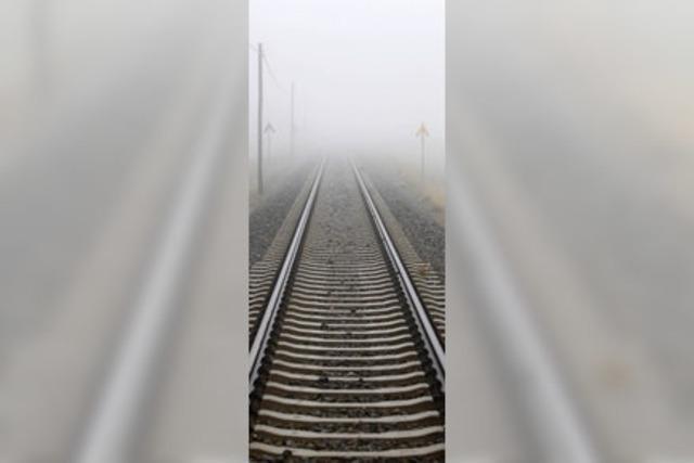 Bahn stärker auf Daseinsvorsorge verpflichten