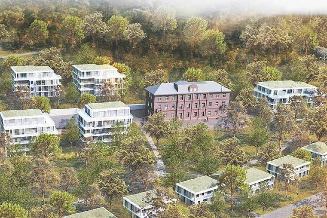 Lahrs Gemeinderat macht den Weg frei für die Bebauung am Altenberg