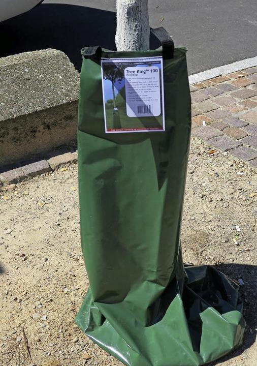 Neues Bewässerungssystem für junge Bäume in Müllheim.  | Foto: Stadt