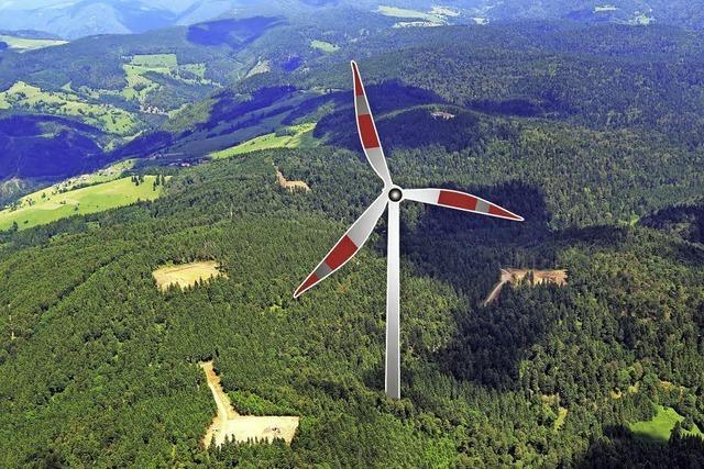 Naturschutz bremst Windkraft ab