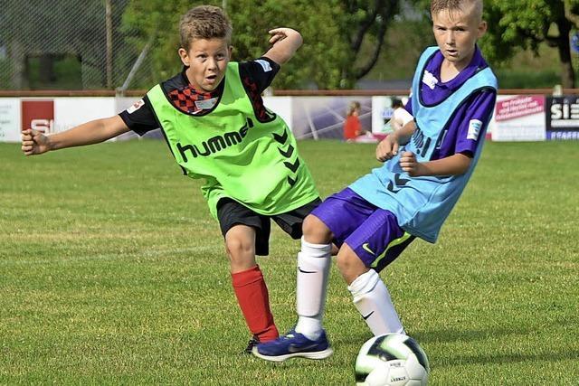 SC Freiburg veranstaltet Fußballturnier für Grundschüler