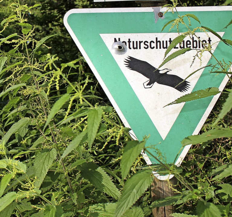 Naturschutzprojekt – nein danke....erdingen stimmte gegen die Teilnahme.     Foto: Pohl