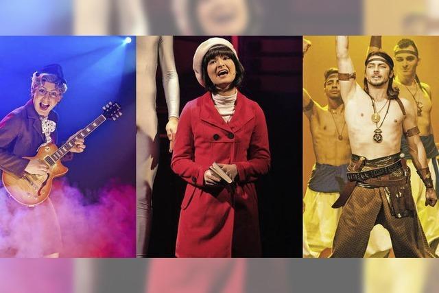 Publikumslieblinge aus den Musicals Bikini Skandal, Herzklopfen und Aida - das Musical kehren zurück