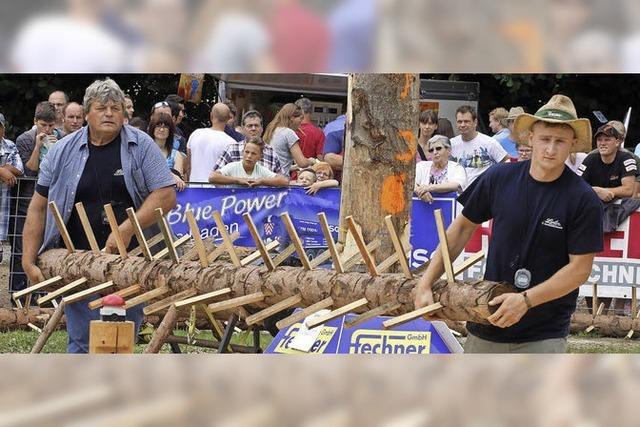 Am Eichberg fliegen die Holzspäne