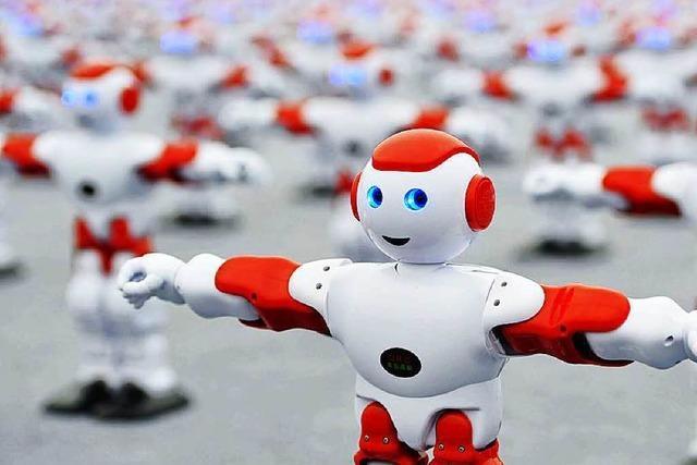 Von Robotern und Hängematten: Am Wochenende wurden kuriose Weltrekorde aufgestellt