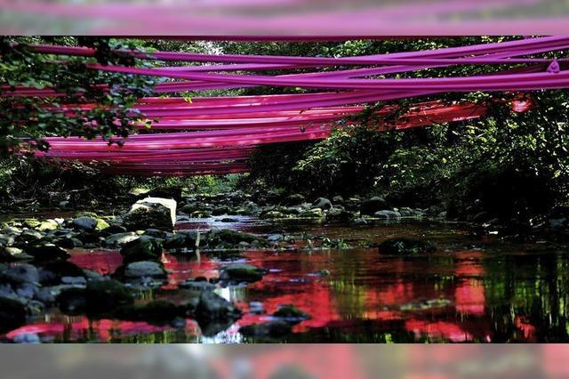 Violettes Farbenspiel über der Wehra