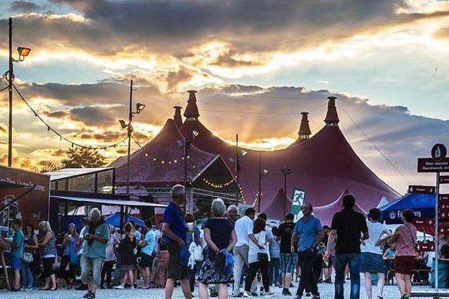 Stimmen-Festival und ZMF mit ihren Bilanzen zufrieden