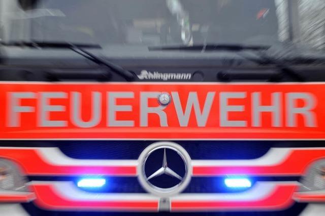 Vier Wohnwagen brennen auf Freiburger Campingplatz aus