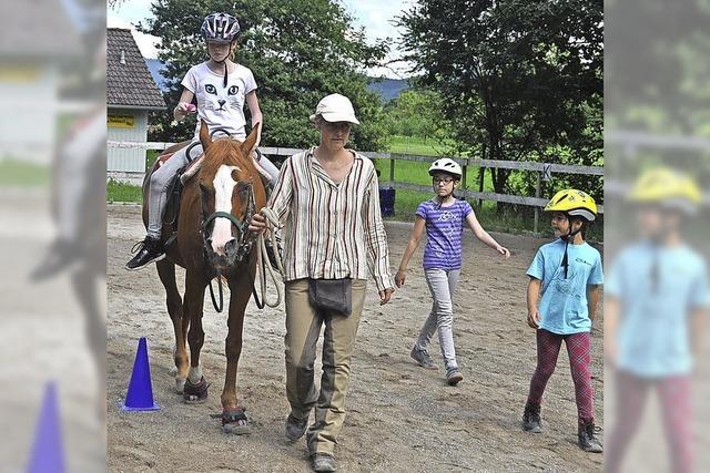 Ferientag mit Pferden