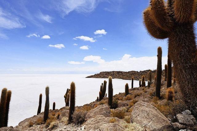 Das bolivianische Hochland in Bondorf und Höchenschwand