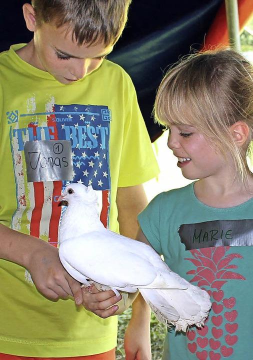Tatsächlich es klappt: Die  weiße Taube setzt sich auf die Hand.  | Foto: Anja Bertsch