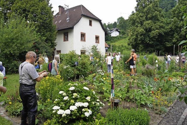 Zauber(hafter) Garten mitten in Oberprechtal