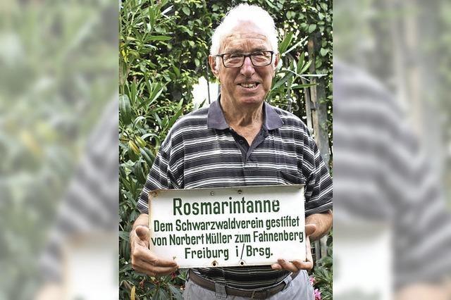 Die Rosmarientanne ist eigentlich eine Douglasie - doch wer war diese Rosemarie?