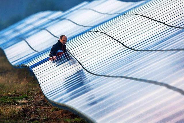 Kein einziger Besucher bei Bürgerinfo zum Solarpark in Rheinfelden