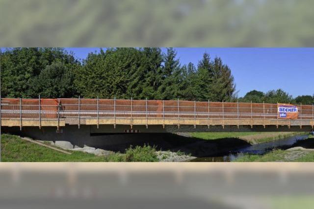 Komplexe Brückensanierung