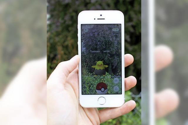 Pokémons tummeln sich in March hinter Gartenzaun