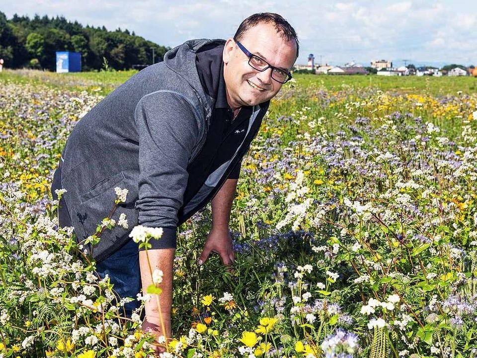 Jürgen Sedler unter blühenden Blumen u...äutern mitten auf dem Wasserpark-Areal    Foto: Bernhard Rein