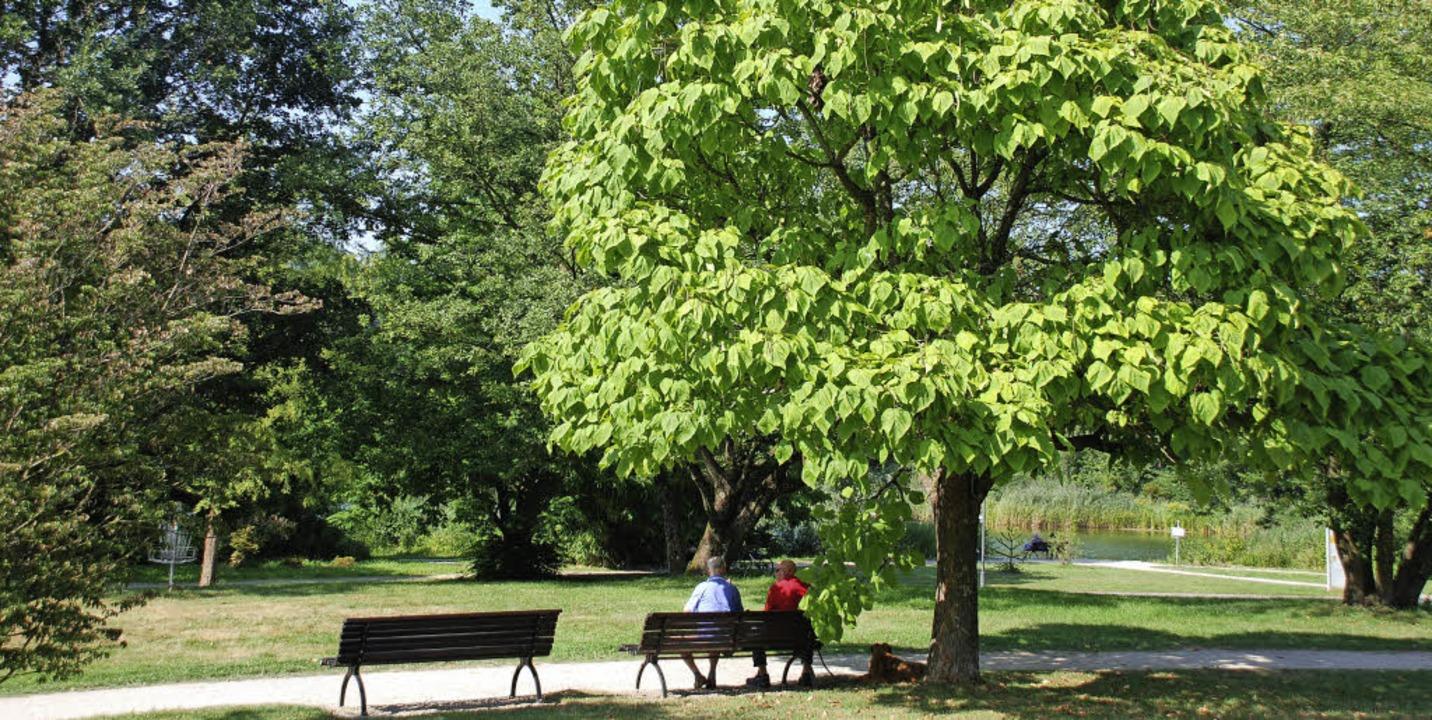 Zeit  unterm Trompetenbaum, der seinen...  trompetenähnlichen Blüten verdankt.     Foto: Maja Tolsdorf