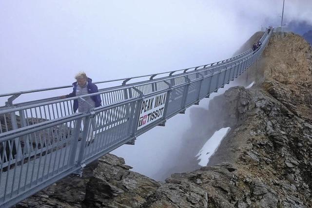 Gipfelglück und Alpenblick