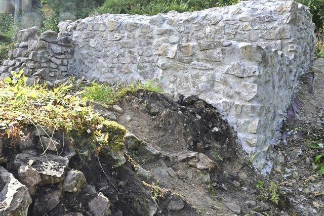 Überreste der Birchiburg in Bollschweil werden restauriert