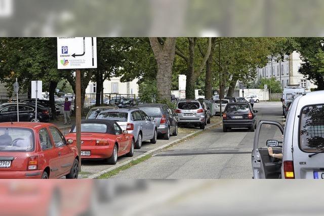 Stadt lehnt Grünen-Antrag ab