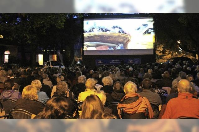 Drei Tage Schopfheimer Open-Air-Kino