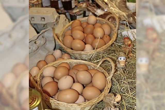 Bauernmarkt in Freiamt