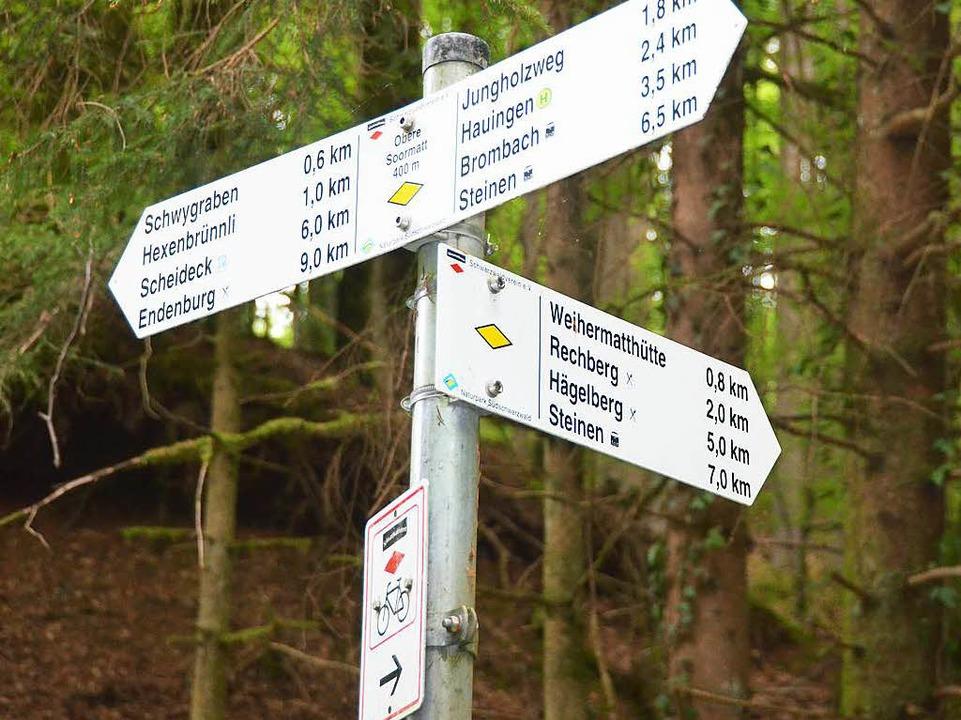Wanderwege  und Strecken für Radler gibt es im Hauinger Wald schon.    Foto: Maja Tolsdorf