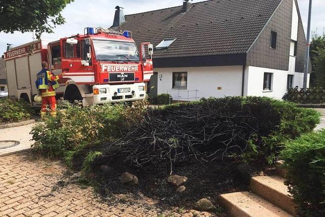 Strauch an der Zellerstraße fängt Feuer