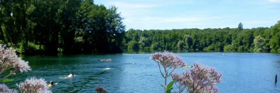 Über 30 Badeseen in Südbaden bieten Erfrischung an heißen Sommertagen
