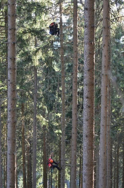 Rettung aus Baumwipfeln: Bei Neustadt ist ein Gleitschirmflieger abgestürzt.    Foto: M.Ganz