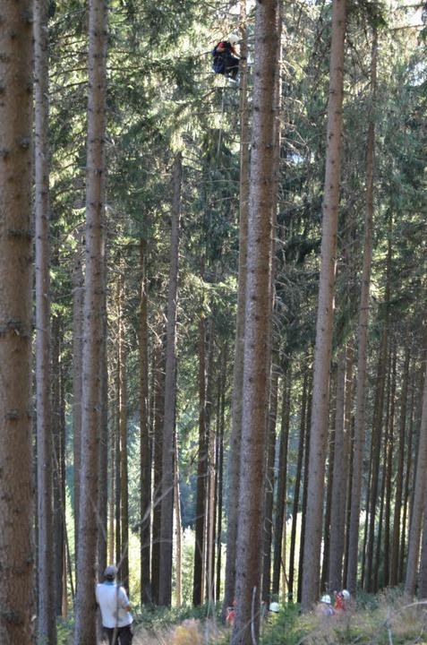 Rettung aus Baumwipfeln: Bei Neustadt ist ein Gleitschirmflieger abgestürzt.    Foto: Martin Ganz (kamera24.tv)