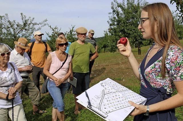 Von alten Sorten und Apfel-Urwald