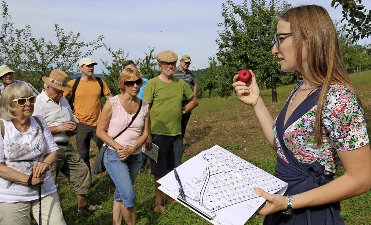 Von alten Sorten und Apfel Urwald Emmendingen Badische