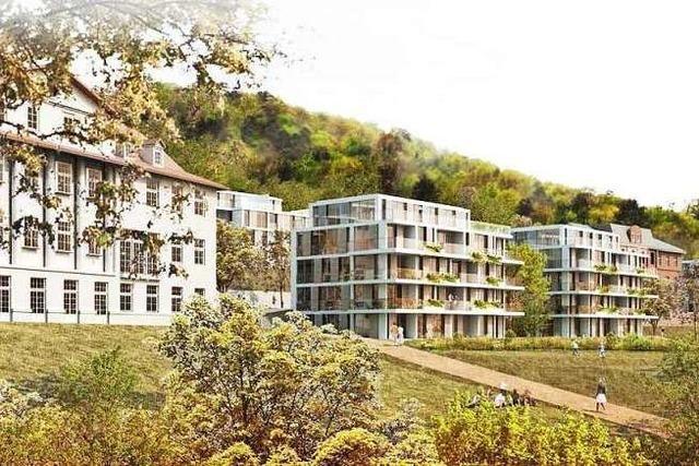 Lahrer BI Altenberg will den Bürgerentscheid