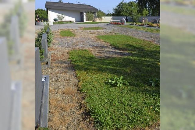 Bürgerin kritisiert Einsatz von Pflanzengift auf dem Friedhof