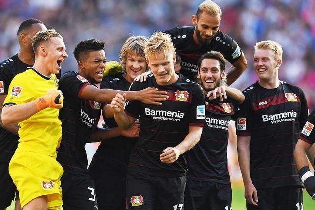 Die Bundesliga im Überblick