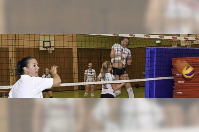 Zweitliga-Volleyballerinnen gehen mit sechsstelligem Etat in die Saison