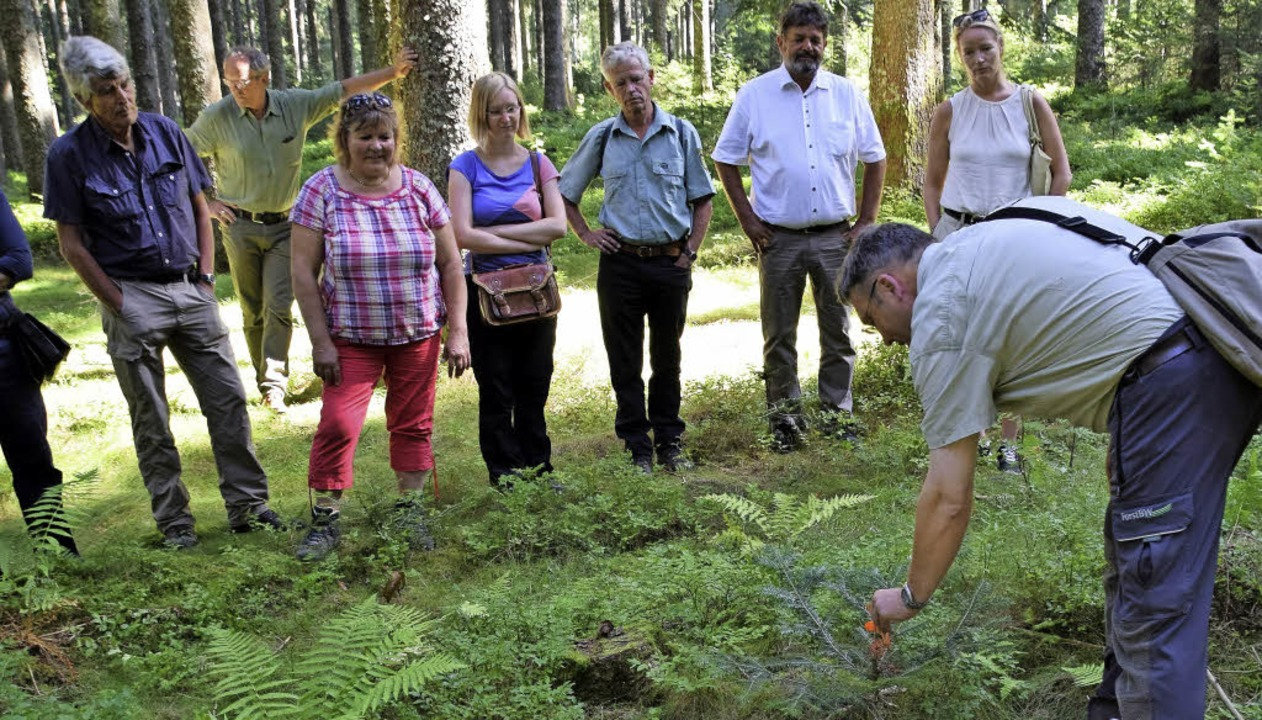 Forstbezirksleiter Thomas Emmerich zei...chtenbestand geschützt werden können.     Foto: Evamarie Kurfess