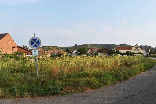 In Bischoffingen sollen acht neue Bauplätze entstehen