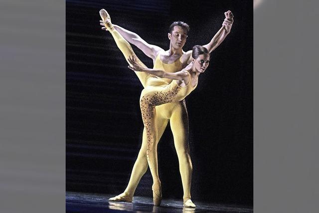 Tänzerische Rückbesinnung
