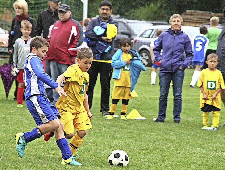 Am Familiensporttag kamen die Nachwuch...l gegen den FC Herrischried (in gelb).  | Foto: Peter Schütz