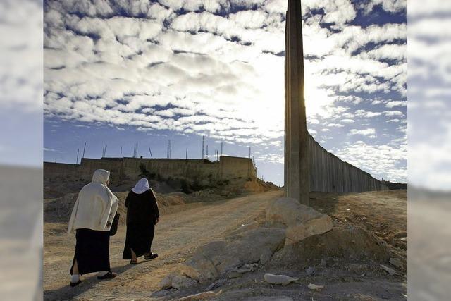 Wie eine Initiative in Israel für den Frieden kämpft