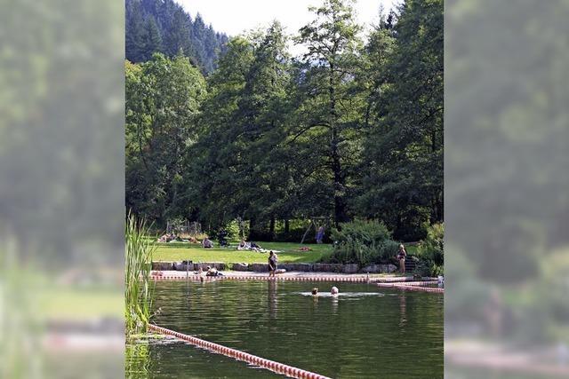 Fuchs oder Marder helfen Schwimmern