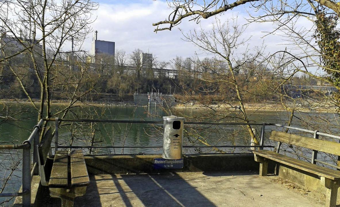 Eine Plattform zur Aufwertung des schw...Rheinufers wünscht sich die IG Steg.    | Foto: Ingrid Böhm-Jacob