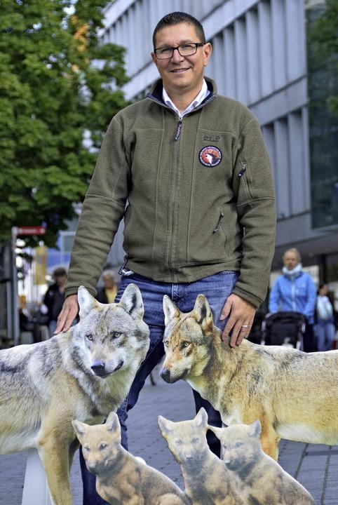 Nur aus Pappe: Michael Schott mit Wölfen in Lörrach  | Foto: Felix Lieschke
